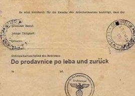 KOVID propusnice -Dokaz da se Ustav gazi i povampiruje fašizam